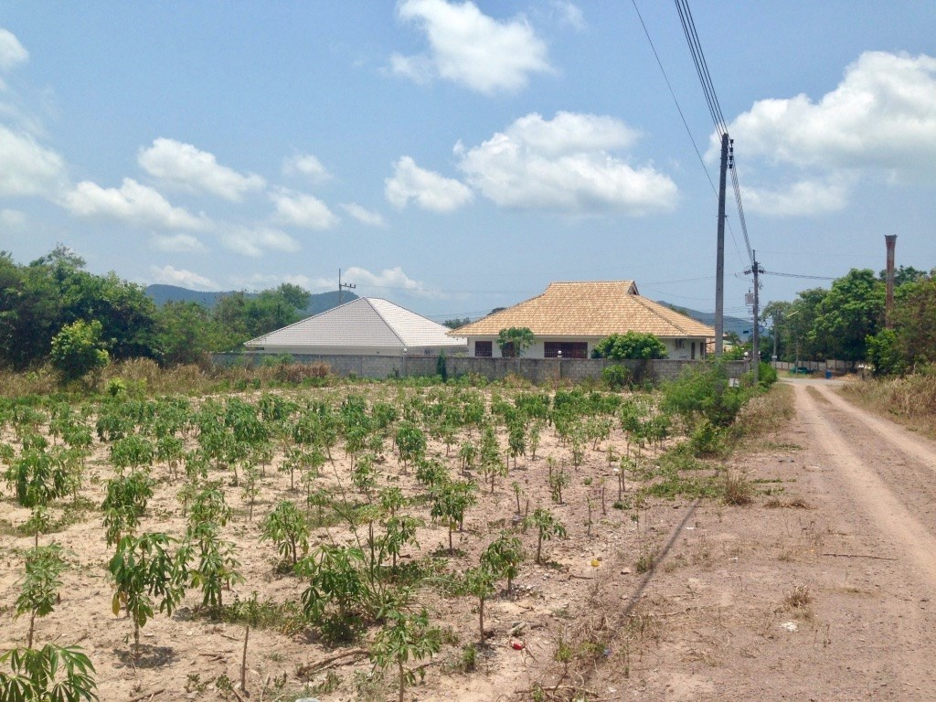 292 t.w. land plot in Bang Sare - Land - Bang Saray -